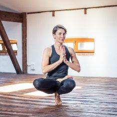 Dom Kultury Jogi  - Vinyasa joga